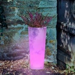 Pot Pot 60cm avec la lumière du soleil 16 couleurs RGBW 'Ficus'
