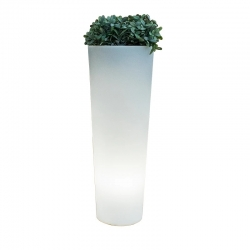 Solar LED Flowerpot 80cm RGBW light of 16 colors 'Ficus'