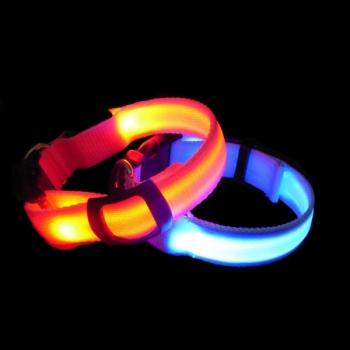 Colliers de chien lumineux
