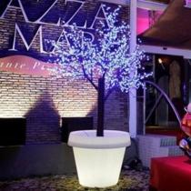Macetero Maceta luz led RGBW 'Roma' 60x68cm