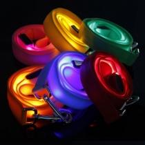 Sangles de chien, lumineuses, LED