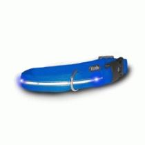 Colliers de chien lumineux, Visiglo, bleu