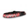 Led dog necklace