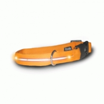 Colliers de chien lumineux, Visiglo, orange
